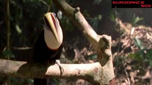 Michael Jackson - Earth Song - 1995